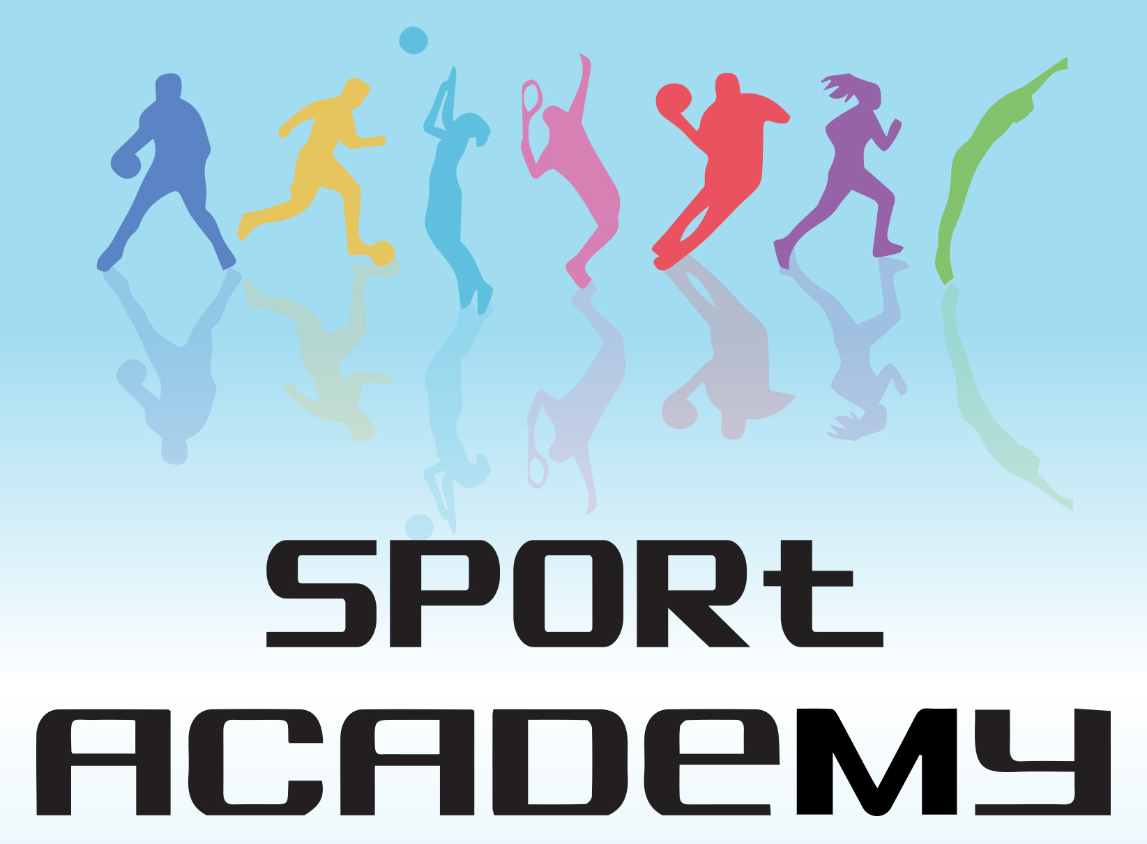 The Sport Academy